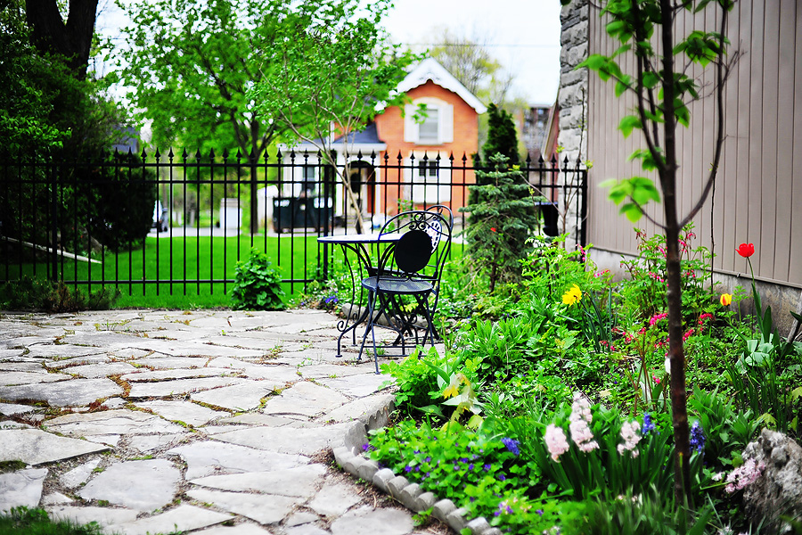 backyard09